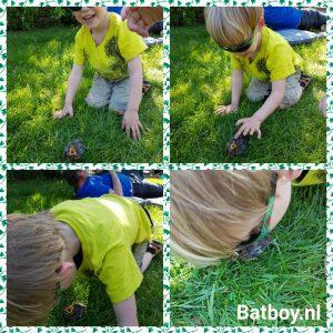 batboy, vogeltje, babyvogel, voeren, eiwitten, wormen