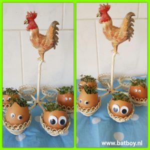 eieren, tuinkers, eten, gezond, batboy