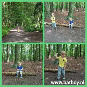 spelen, weusthagpark, bos, hengelo, batboy, van alphenbos, kinderboerderij t weusthag