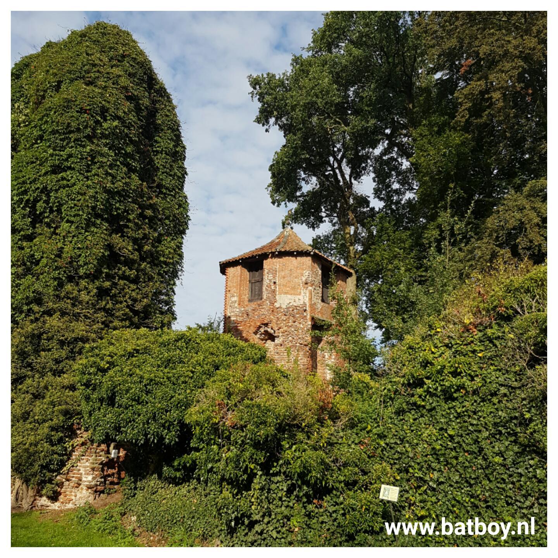lolly, kasteelruine lage, herrenhaus