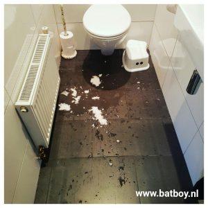 wc, plassen, batboy, wc bril, urine, staand plassen, zittend plassen, toilet, jongens, hygienisch