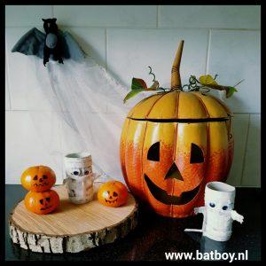 mummie, halloween, versieren, diy, kinderen, knutselen, batboy, wc, wcrol, papier