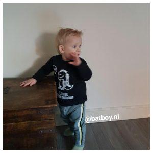 dinosaurus, baby, longsleeve, babykleding, jongen, kmleon, batboy, t-shirts
