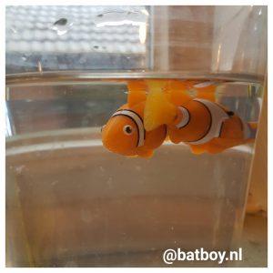 robo fish, batboy, vissenkom, vissen, vis, action