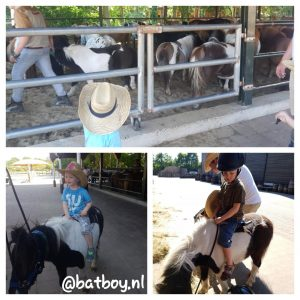 vakantiepark ponyparkcity, het vakantiehuisje, een pony uitzoeken