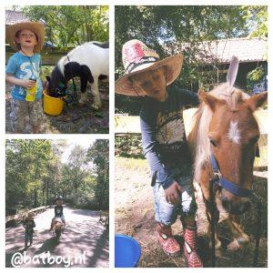 vakantiepark ponyparkcity, slagharen, batboy, het vakantiehuisje