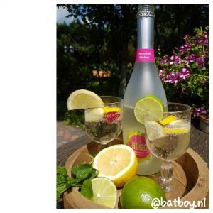 batboy, zomers drankje, een fris zomers drankje