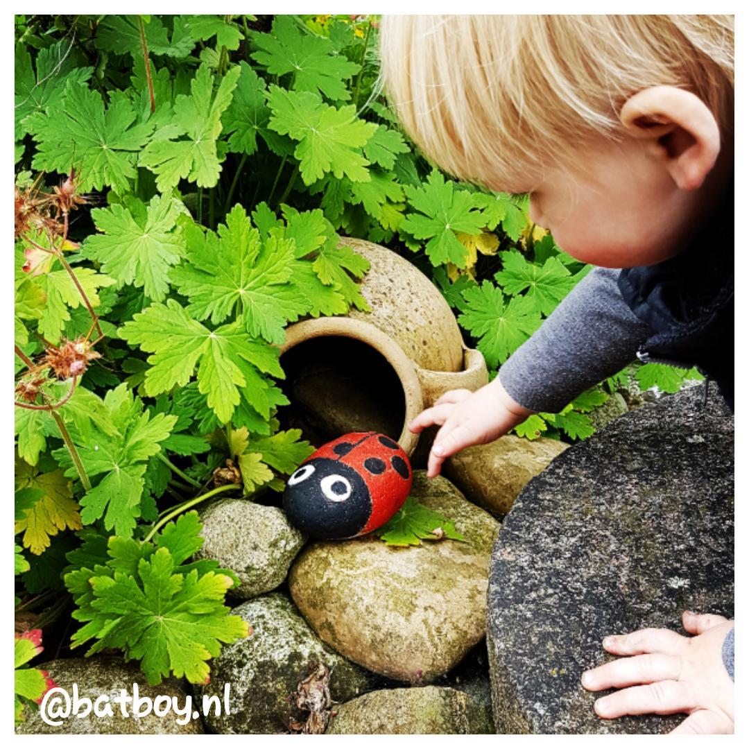 stenen, diy, lieveheersbeestjes, lieveheersbeestjes in de tuin