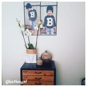 orchidee, white world orchidee, het beste van de kweker, batboy, mamablog, een orchidee van het beste van de kweker