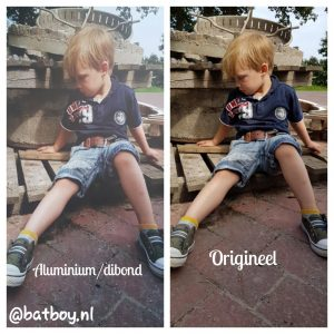 foto op aluminium/dibond, mamablog, batboy