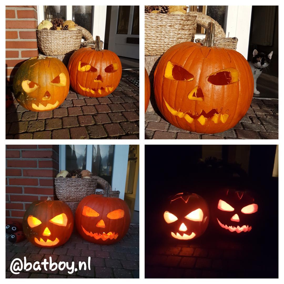 Hoe Maak Je Een Halloween Pompoen.Halloween Pompoen Maken Knutselen Bij Tuincentrum Borghuis