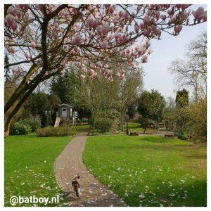 speeltoestellen in de tuin, mamablog, batboy