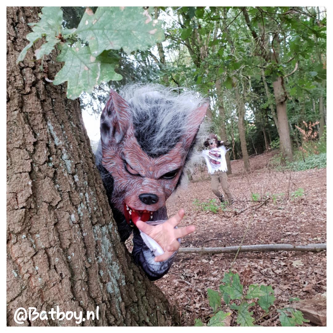 halloween kostuum, verkleden, weerwolf, mamablog, batboy