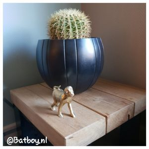 kamerplanten, makkelijk, mamablog, batboy
