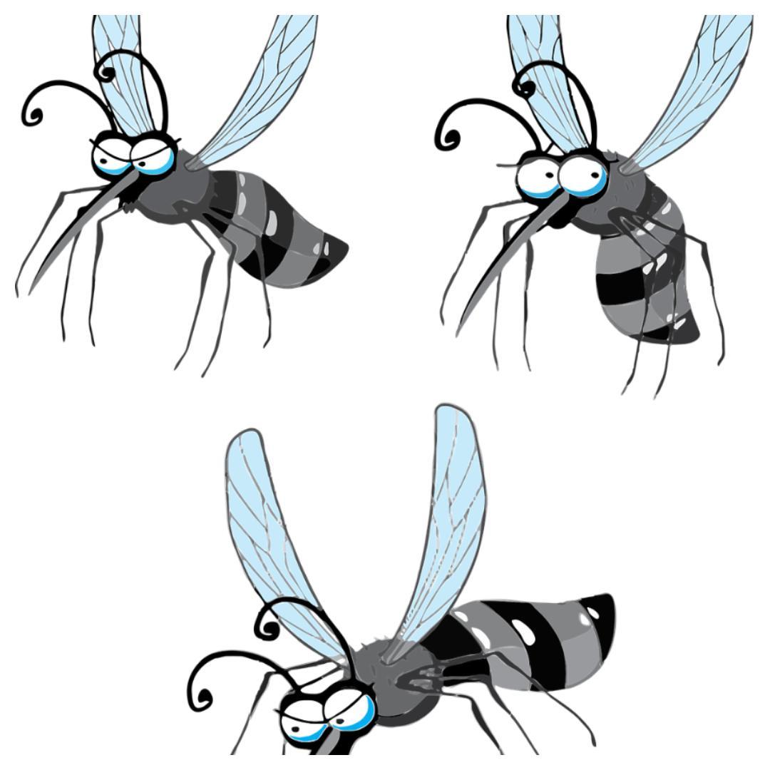mug, muggen, lavende, anti-muggenl