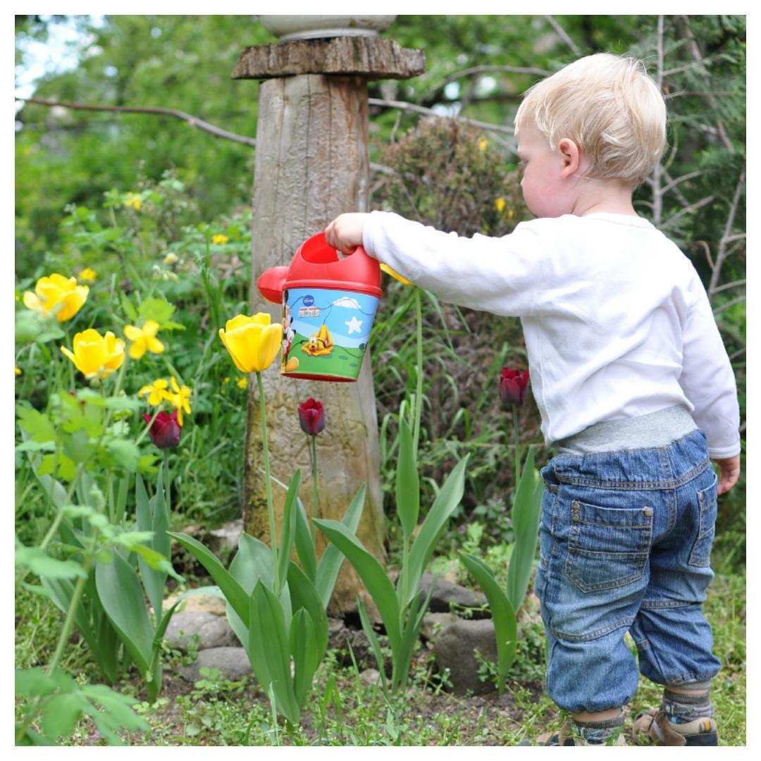 giftige planten, giftig, planten, kinderen