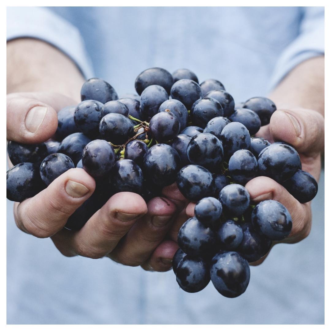 stukjes, druiven