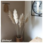 macramé veer, touw, decoratie