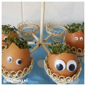 tuinkers, eierschalen