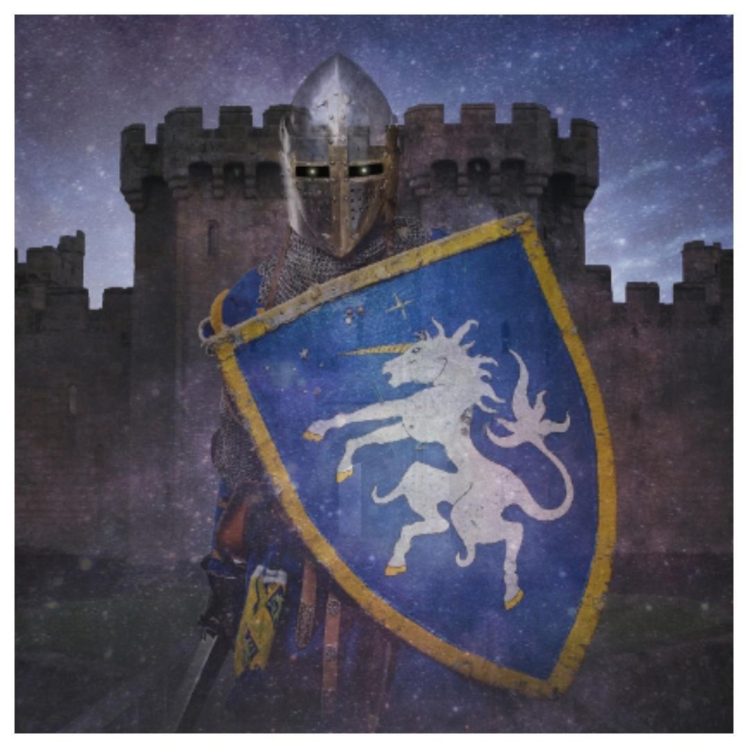 ridder, ridders, tentoonstelling, amsterdam, hermitage, riddertijd