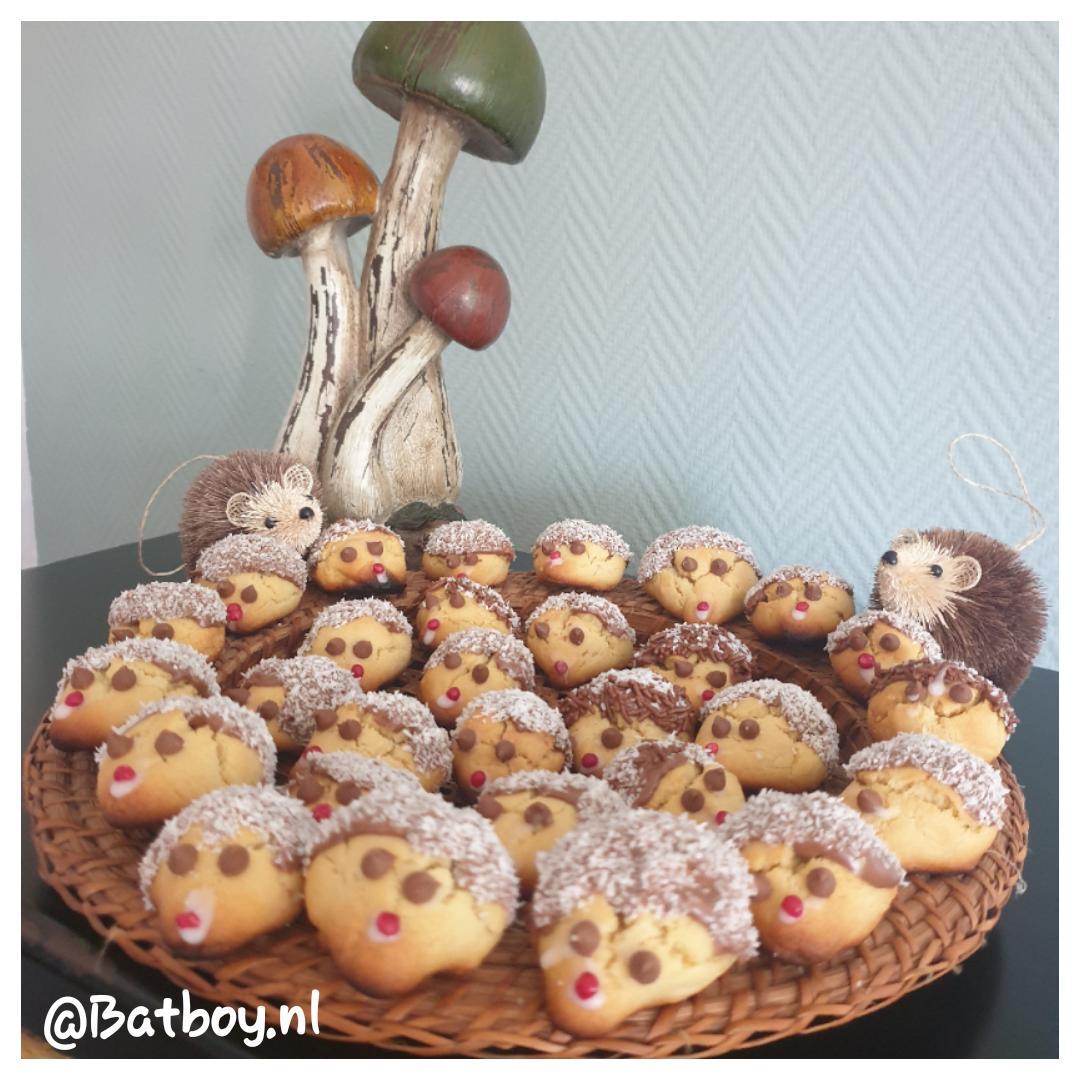 Leuk om te doen in de herfstvakantie: egel koekjes bakken